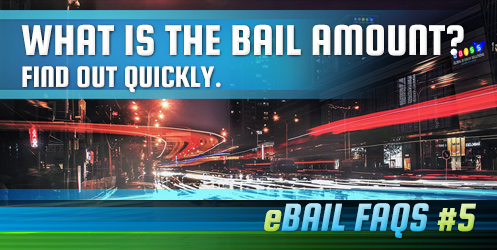 What is the Bail Amount?